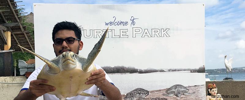 turtle-island-bali