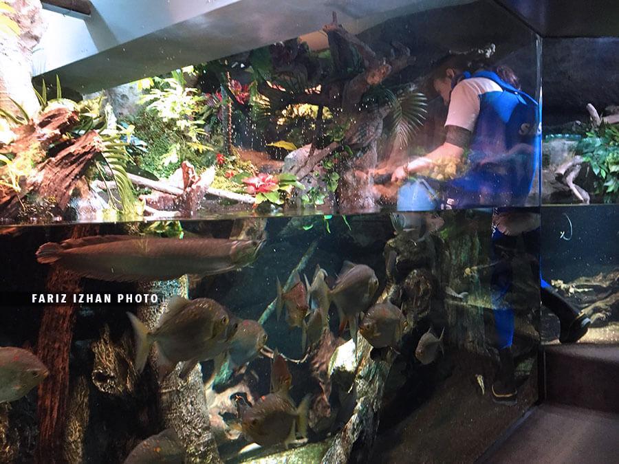 aquarium sunshine ikebukuro