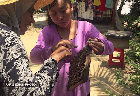 madu-asli-kebun-madu-lebah-sungai-mekong-vietnam