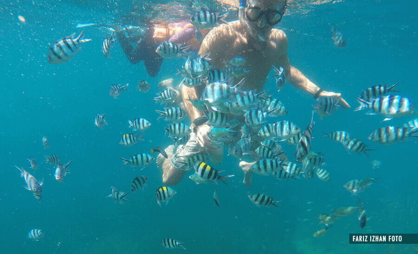 snorkeling-ombak-resort-perhentian-kecil-fariz-izhan