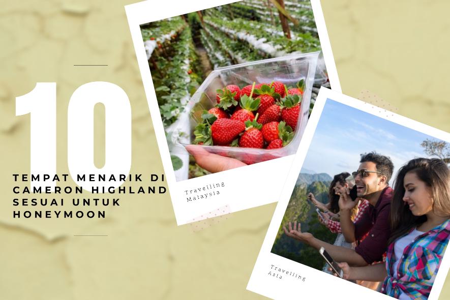 10 tempat cameron highland